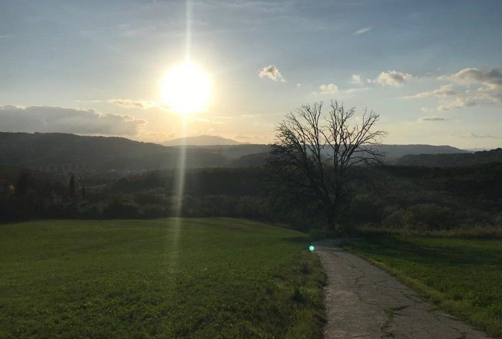 Percorso Orte – Molegnano – Argine destro del Tevere – Castel Bagnolo – Orte